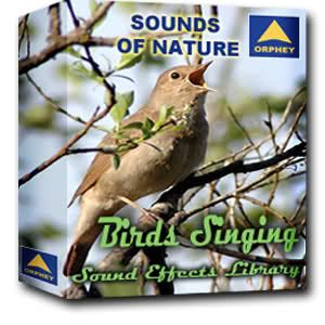 Orphey Sounds Of Nature - Birds Singing WAV