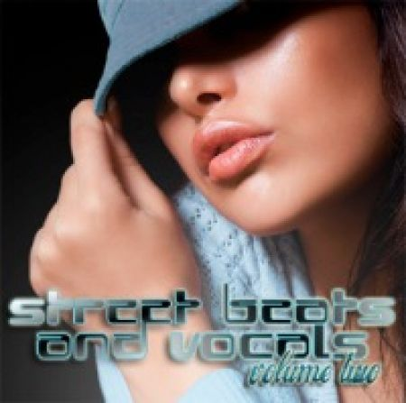 Big Fish Audio Street Beats and Vocals Vol.2 MULTiFORMAT SCD DVDR-SONiTUS