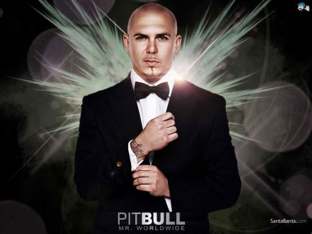 Pitbull Acapellas Vol 2