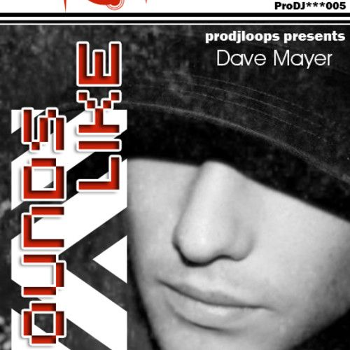 ProDJLoops Sounds Like Dave Mayer WAV-MAGNETRiXX