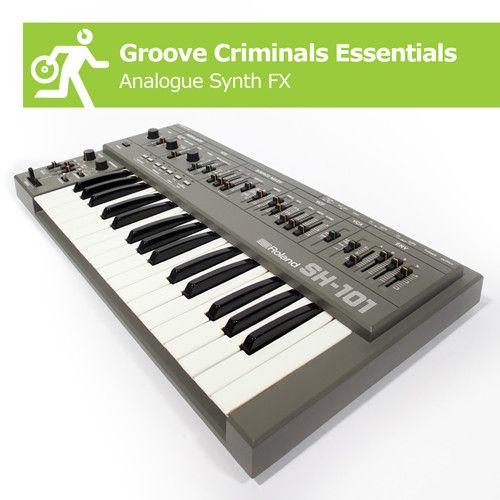 The Groove Criminals Groove Criminals Essentials Analogue Synth FX WAV-MAGNETRiXX