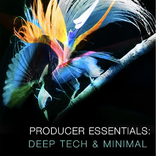 SPF Samplers Producer Essentials Deep Tech and Minimal WAV MiDi Sylenth1 Presets-MAGNETRiXX