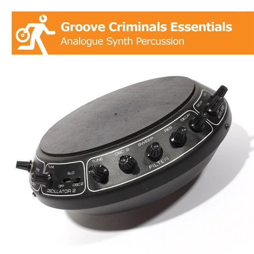 The Groove Criminals Groove Criminals Essentials Analogue Synth Percussion WAV-MAGNETRiXX