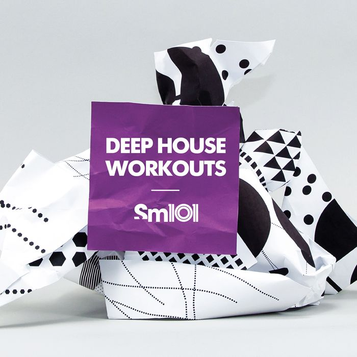 SM101 Deep House Workouts WAV MiDi-MAGNETRiXX