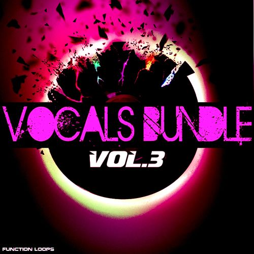 Function Loops Vocals Bundle Vol.3 WAV MiDi-MAGNETRiXX