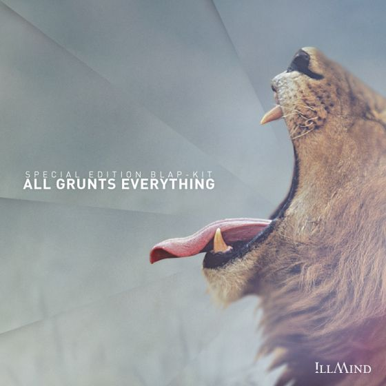 Illmind All Grunts Everything Special Limited Edition WAV